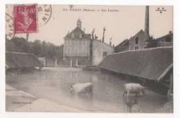 VARZY - Les Lavoirs - Non Classificati