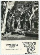 Indochine  Cambodge Angkor Ruines Envahies Par La Grande Forêt - Cambodia