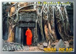 CAMBODIA - TA PROHM TEMPLE - ANGKOR THOM - SIEM REAP - PERFECT MINT QUALITY - Cambodia