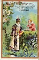 CHROMO  BERLINGOTS- EYSSERIC  CARPENTRAS  Langage Des Fleurs L' Aubépine ° - Süsswaren