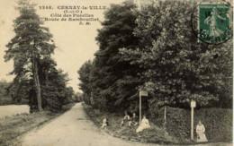 78 --CERNAY--la-VILLE- Cote Des Pucelles--Route De Rambouillet- Animée - Cernay-la-Ville