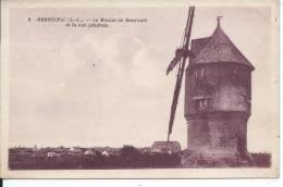 HERBIGNAC - Le Moulin De Ranrouet Et La Vue Générale - MOULIN A VENT - Herbignac