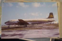 DC 7 B    PANAGRA      N51704 - 1946-....: Modern Era