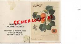 87 - LE PALAIS SUR VIENNE - CALENDRIER PUB-  PHARMACIE COUBRET DUMAS- 4 PLACE DE LA REPUBLIQUE -2007 - Calendriers
