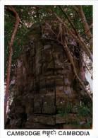CAMBODIA - TA PROHM TEMPLE - ANGKOR THOM - SIEM REAP - MINT QUALITY - Cambodia