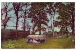 Postcard - Druids´ Altar, Phoenix Park, Dublin -  Posted 1907 #4808 - Dublin