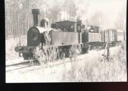 Photo Train Sans Indication - Treni