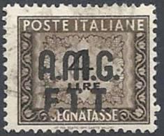 1947-49 TRIESTE A USATO SEGNATASSE 2 RIGHE 4 LIRE - RR11342 - 7. Trieste