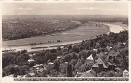 Dresden Weisser Hirsch Blick Vom Luisenhof Auf Dresden Postcard (F4636) - Dresden