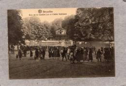 37878     Belgio,   Bruxelles   -   Bois  De  La  Cambre  Lac  Et  Chalet  Robinson,  NV - Foreste, Parchi, Giardini