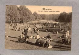 37881     Belgio,   Bruxelles   -   Bois  De  La  Cambre  Pelouse  Des  Anglais,  NV - Foreste, Parchi, Giardini