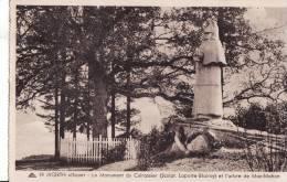 WOERTH Sur SAUER, Monument Des Cuirassiers Et L'Abre De Mac-Mahon - Woerth
