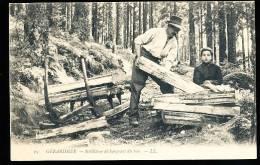 88 VOSGES DIVERS / Schlitteur Déchargeant Du Bois / - Non Classificati