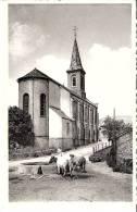 """Petit-Fays (Monceau-en-Ardenne) Eglise-Vaches à L´Abreuvoir En Pierre- Hôtel De La Vallée -J.Robinet-Grandjean"""" (scan) - Bièvre"""