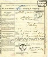 776/20 - Document Avis De Non Livraison Cachet Gare MELLE1914 - Via Poste MELLE  Vers ESSCHEN - Zonder Classificatie
