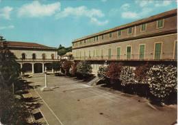 ALI´ TERME  /  Istituto M. Ausiliatrice - Messina