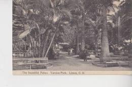 The Beautiful Palms Varejas Park Limon CR Costa Rica  Circulé 22 Février 1915 Pour St Omer Pas De Calais - Costa Rica