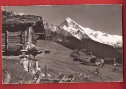 YHER-04 Hérens, Raccard à La Forclaz D'Hérens,Dent Blanche. Cachet 1962. Klopfenstein 17808 - VS Valais