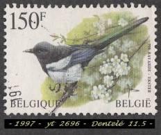 1997 -  Europe  -  Belgique -  150 F. Pie Bavarde (  Pica Pica )  - - Passereaux