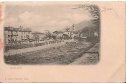 A013 - SUSA - LUNGO DORA - TORINO - A. 1895-1905 - Sin Clasificación