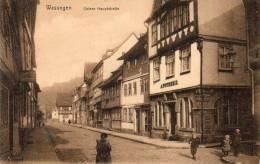 Wasungen Untere Haupstrasse Aphoteke 1905 Postcard - Wasungen