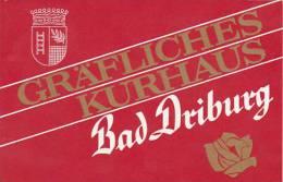 GERMANY BAD DRIBURG GRAEFLICHES KURHAUS VINTAGE LUGGAGE LABEL - Hotel Labels