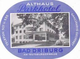 GERMANY BAD DRIBURG PARKHOTEL ALTHAUS VINTAGE LUGGAGE LABEL