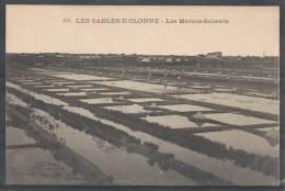 85 - LES SABLES D´OLONNE - Les Marais-Salants - Vassellier 553 - Sables D'Olonne