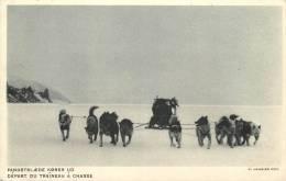 GROENLAND - Départ Du Traîneau à Chasse - Greenland
