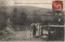 Carte Postale Ancienne De  BRIQUENAY - Sonstige Gemeinden