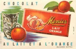 Buvard Réf.044. Chocolat Meunier Lait Orange - Chaton - Cocoa & Chocolat