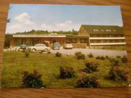 Steinfeld Oldb. - Dammer Berge - Hotel Restaurant Schemder Bergmark  -Ponyhof -  Automobile Auto Car    D103287 - Oldenburg