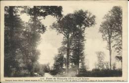 03 . Cerilly ; FORET DE TRONCAIS  .quelques Beaux Chenes ; Celui De Gauche  L APOLLON Mesure 4m75 De Circonference - Other Municipalities