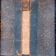 LA REPUBLIQUE ARGENTINE PHYSIQUE ET ECONOMIQUE PAR LOUIS GUILAINE PREFACE D'EMILE GAUTIER PARIS 1889 LIBRAIRIE DES - Livres, BD, Revues