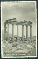 Palmyre Temple Dit De Dioclétien - Uo99 - Syrië