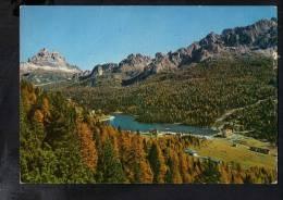 H463 Misurina, Monte Cadini, Tre Cime - Annullo Souvenir Da Anita - Italia