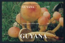 Guyana Mushrooms S/S Pilze Block °BM0413 MNH - Pilze