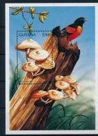 Guyana Mushrooms Birds S/S Pilze Vögel Block °BM0436 MNH - Pilze