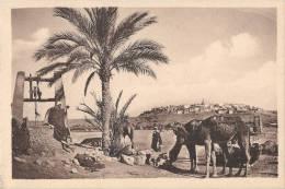 Un Joli Paysage Du M'zab Le Puits édition Hussein Dey Neuve Excellent état - Algérie