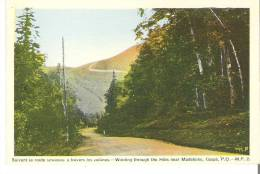 Suivant La Route Sinueuse A Travers Les Collines Pres De Madeleine, Gaspe, Quebec  Winding Through The Hills - Gaspé