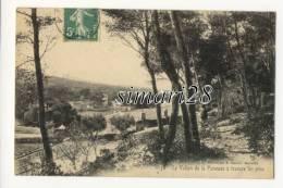 LE VALLON DE LA PANOUSE A TRAVERS LES PINS - N° 1158 - France