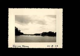 56 - ILE-AUX-MOINES- Photo De 1948 - Lieux