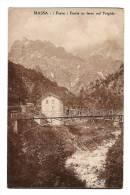 MASSA - ( Forno ) Ponte In Ferro Sul Frigido - Pont De Chemin De Fer - Schierna Vergine - Massa