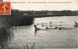 CPA Chasse A Courre, Bat L'eau Dans L'étang Des Hogues, équipage De Bonnelles, Rambouillet. 1912 - France