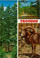 CYPRUS - PRE 1984 -  TROODOS - PERFECT MINT QUALITY - Cyprus