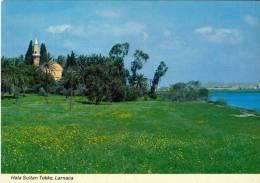 CYPRUS - PRE 1984 -  HALA SULTAN TEKKE, LARNACA - PERFECT MINT QUALITY - Cyprus
