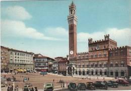 2321.   Siena - Il Campo - Cars - Auto - Voitures - Siena