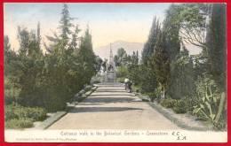 Cape Of Good Hope 1906. Entrance Walk In The Botanical Gardens, Queenstown. - Südafrika