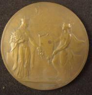 M01486 Les X Provincialis 1836-1936 Par Bonnetain, Une Victoire Et Une Femme (130 G.) - Other