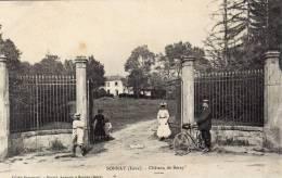 DPT  38 SONNAY Chateau De Beray - Autres Communes